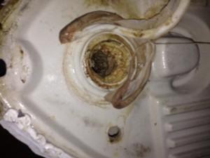 掛川市大池店舗男子トイレ小便器詰り修理