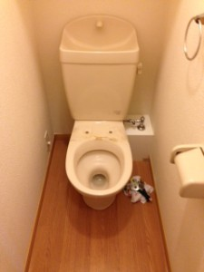静岡市清水区 洗浄便座交換